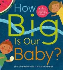 Smriti Prasadam-Halls: How Big is Our Baby?, Buch