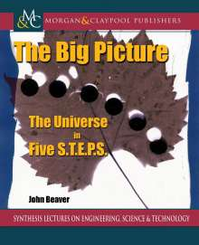 John Beaver: The Big Picture, Buch