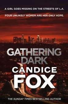 Candice Fox: Gathering Dark, Buch