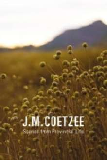 J. M. Coetzee: Scenes from Provincial Life, Buch