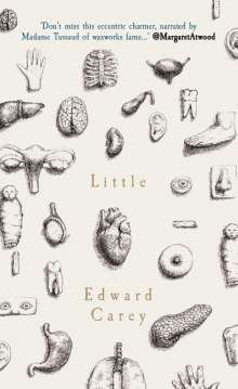 Edward Carey: Little, Buch