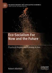 Robert Albritton: Eco-Socialism For Now and the Future, Buch