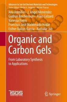 Ana Arenillas: Organic and Carbon Gels, Buch