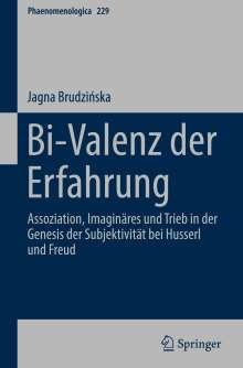 Jagna Brudzinska: Bi-Valenz der Erfahrung, Buch