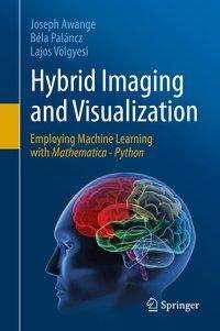 Joseph Awange: Hybrid Imaging and Visualization, Buch