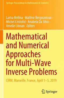 Mathematical and Numerical Approaches for Multi-Wave Inverse Problems, Buch