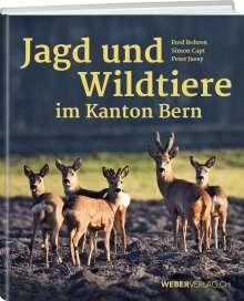 Peter Juesy: Jagd und Wildtiere im Kanton Bern, Buch