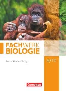 Udo Hampl: Fachwerk Biologie 9./10. Schuljahr - Berlin/Brandenburg - Schülerbuch, Buch