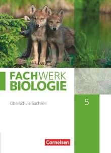 Ulrike Dives: Fachwerk Biologie - Sachsen. 5. Schuljahr - neuer Lehrplan - Schülerbuch - Neubearbeitung, Buch