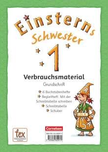 Jutta Maurach: Einsterns Schwester - Erstlesen 1. Schuljahr Grundschrift: 6 Buchstabenhefte und Begleitheft im Schuber, Buch