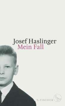 Josef Haslinger: Mein Fall, Buch