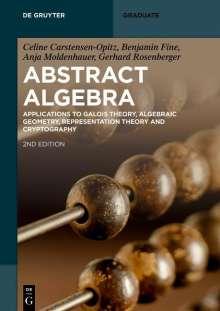 Celine Carstensen-Opitz: Abstract Algebra, Buch