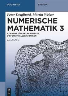 Martin Weiser: Numerische Mathematik 3, Buch