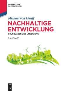 Michael Hauff: Nachhaltige Entwicklung, Buch