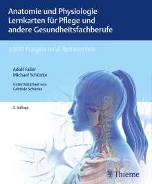 Adolf Faller: Anatomie und Physiologie Lernkarten für Pflege und andere Gesundheitsfachberufe, Diverse
