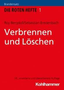 Roy Bergdoll: Verbrennen und Löschen, Buch