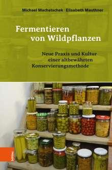 Michael Machatschek: Fermentieren von Wildpflanzen, Buch