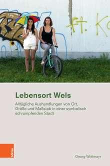 Georg Wolfmayr: Lebensort Wels, Buch