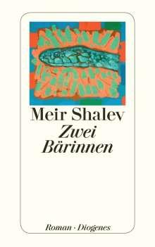 Meir Shalev: Zwei Bärinnen, Buch