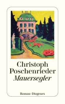 Christoph Poschenrieder: Mauersegler, Buch
