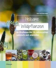 Frank Hecker: Heilsame Wildpflanzen, Buch