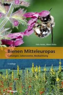 Felix Amiet: Bienen Mitteleuropas, Buch