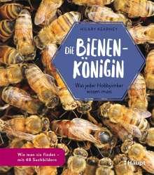 Hilary Kearney: Die Bienenkönigin, Buch