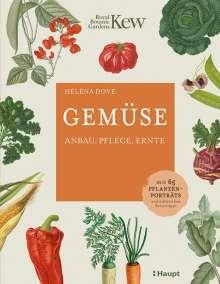 Hélèna Dove: Gemüse, Buch