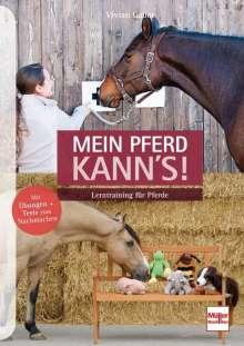 Vivian Gabor: Mein Pferd kann's!, Buch