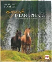 Gabriele Boiselle: Magische Islandpferde, Buch