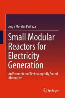 Jorge Morales Pedraza: Small Modular Reactors for Electricity Generation, Buch