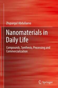 Zhypargul Abdullaeva: Nanomaterials in Daily Life, Buch