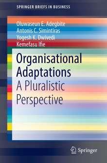 Oluwaseun E. Adegbite: Organisational Adaptations, Buch