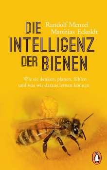 Randolf Menzel: Die Intelligenz der Bienen, Buch
