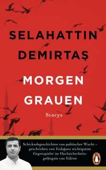Selahattin Demirtas: Morgengrauen, Buch