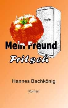 Hannes Bachkönig: Mein Freund Fritsch, Buch