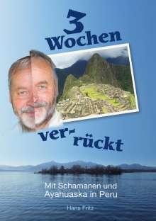 Hans Fritz: Drei Wochen ver-rückt, Buch