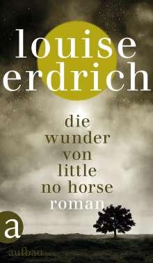 Louise Erdrich: Die Wunder von Little No Horse, Buch