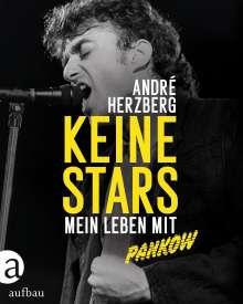 André Herzberg: Keine Stars, Buch