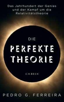 Pedro G. Ferreira: Die perfekte Theorie, Buch