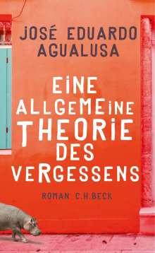 José Eduardo Agualusa: Eine allgemeine Theorie des Vergessens, Buch