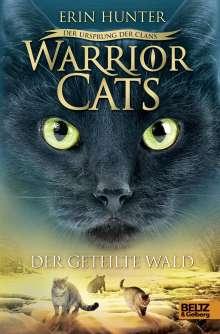 Erin Hunter: Warrior Cats Staffel 5/05. Der Ursprung der Clans. Der geteilte Wald, Buch