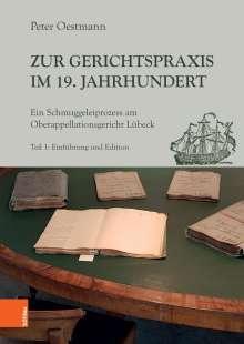 Peter Oestmann: Zur Gerichtspraxis im 19. Jahrhundert, Buch
