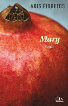 Aris Fioretos: Mary, Buch