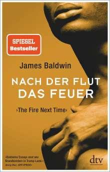 James Baldwin: Nach der Flut das Feuer, Buch