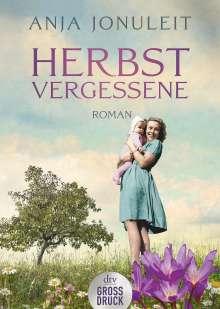 Anja Jonuleit: Herbstvergessene, Buch