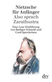 Rüdiger Schmidt: Nietzsche für Anfänger: Also sprach Zarathustra, Buch