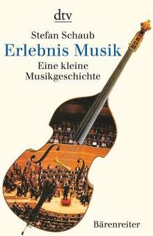 Stefan Schaub: Erlebnis Musik, Buch