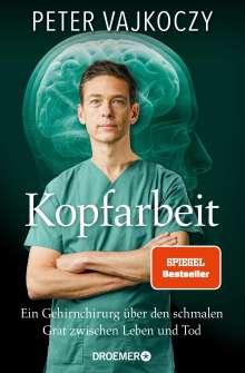 Peter Vajkoczy: Kopfarbeit, Buch