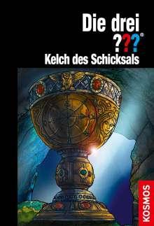 Kari Erlhoff: Die drei ??? Kelch des Schicksals, Buch